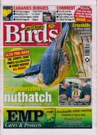 Cage And Aviary Birds Magazine Issue 01/07/2020