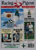 Racing Pigeon Magazine Issue 03/07/2020