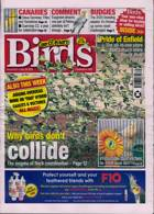 Cage And Aviary Birds Magazine Issue 29/07/2020