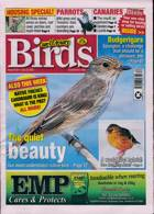 Cage And Aviary Birds Magazine Issue 22/07/2020