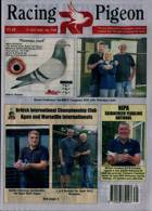 Racing Pigeon Magazine Issue 31/07/2020