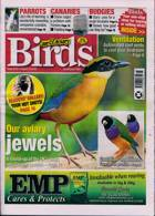 Cage And Aviary Birds Magazine Issue 12/08/2020
