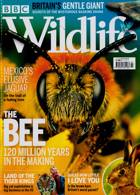 Bbc Wildlife Magazine Issue JUL 20