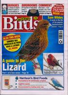 Cage And Aviary Birds Magazine Issue 26/08/2020