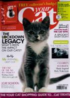 Your Cat Magazine Issue OCT 20