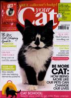 Your Cat Magazine Issue AUG 20