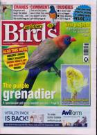 Cage And Aviary Birds Magazine Issue 02/09/2020
