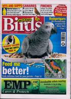 Cage And Aviary Birds Magazine Issue 09/09/2020