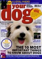 Your Dog Magazine Issue OCT 20
