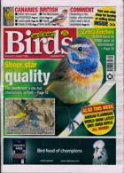 Cage And Aviary Birds Magazine Issue 07/10/2020
