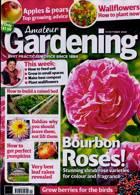 Amateur Gardening Magazine Issue 31/10/2020