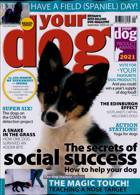 Your Dog Magazine Issue SEP 20