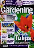 Amateur Gardening Magazine Issue 07/11/2020
