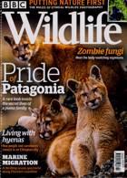 Bbc Wildlife Magazine Issue OCT 20