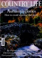 Country Life Magazine Issue 28/10/2020