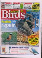 Cage And Aviary Birds Magazine Issue 04/11/2020