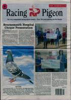 Racing Pigeon Magazine Issue 06/11/2020