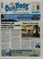 Our Dogs Magazine Issue 13/11/2020