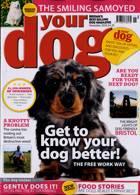 Your Dog Magazine Issue NOV 20