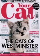 Your Cat Magazine Issue NOV 20