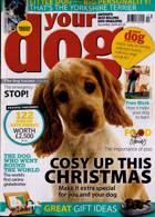 Your Dog Magazine Issue DEC 20