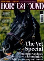 Horse And Hound Magazine Issue 12/11/2020