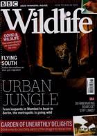 Bbc Wildlife Magazine Issue NOV 20