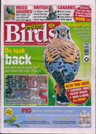 Cage And Aviary Birds Magazine Issue 02/12/2020