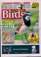 Cage And Aviary Birds Magazine Issue 09/12/2020