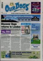 Our Dogs Magazine Issue 11/12/2020