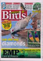 Cage And Aviary Birds Magazine Issue 16/12/2020
