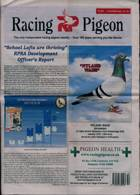 Racing Pigeon Magazine Issue 11/12/2020