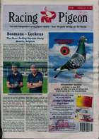 Racing Pigeon Magazine Issue 31/12/2000
