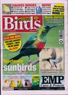 Cage And Aviary Birds Magazine Issue 06/01/2021