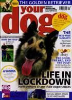 Your Dog Magazine Issue JAN 21