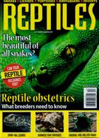 Reptiles Magazine Issue 12