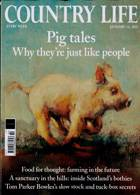 Country Life Magazine Issue 13/01/2021