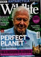 Bbc Wildlife Magazine Issue FEB 21
