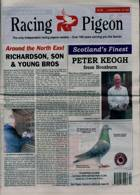 Racing Pigeon Magazine Issue 02