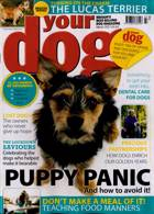Your Dog Magazine Issue MAR 21