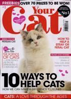 Your Cat Magazine Issue FEB 21