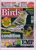 Cage And Aviary Birds Magazine Issue 17/03/2021