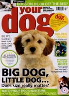 Your Dog Magazine Issue APR 21