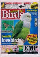 Cage And Aviary Birds Magazine Issue 31/03/2021