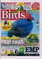 Cage And Aviary Birds Magazine Issue 06