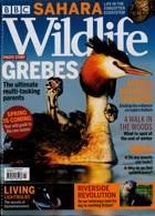 Bbc Wildlife Magazine Issue MAR 21