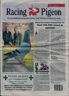 Racing Pigeon Magazine Issue 12/02/2021