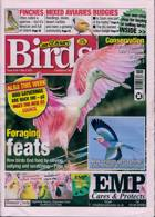 Cage And Aviary Birds Magazine Issue 05/05/2021