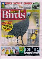 Cage And Aviary Birds Magazine Issue 03/03/2021