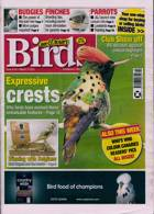 Cage And Aviary Birds Magazine Issue 10/03/2021